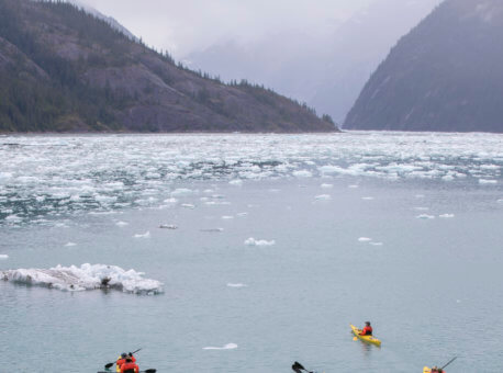 Kayaking - Endicott Arm, Alaska