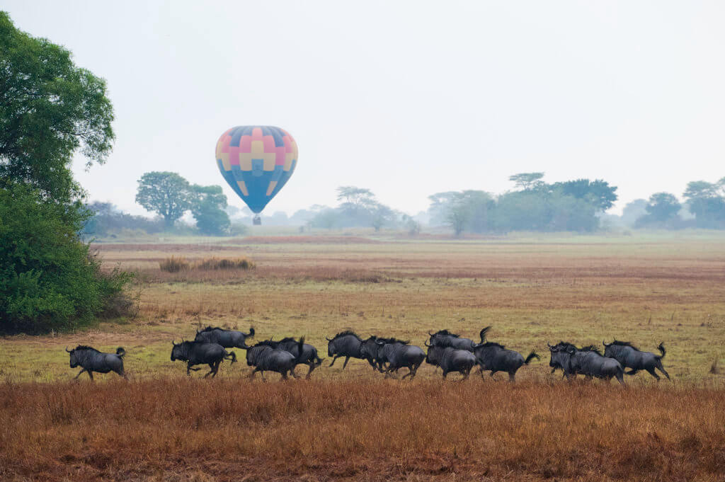 Hot Air Balloon Africa