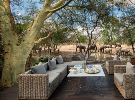 Header-elephants-at-waterhole-at-luxury-andbeyond-ngala-safari-lodge-close-to-kruger-national-park-in-south-africa1